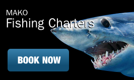 Mako Fishing Charters Book Now