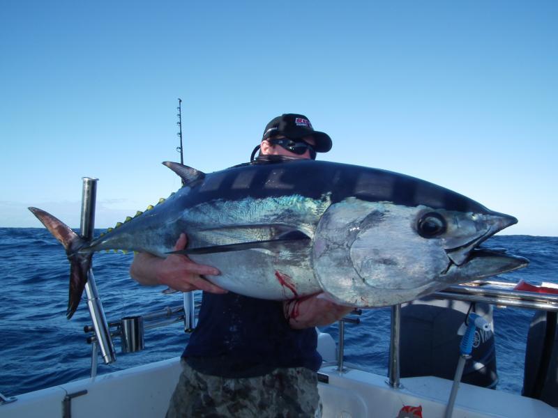 Fishing charters for snapper tuna mako marlin in port for Tuna fishing charters